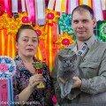 Котята выпускники из питомника JEWEL SAPPHIRE